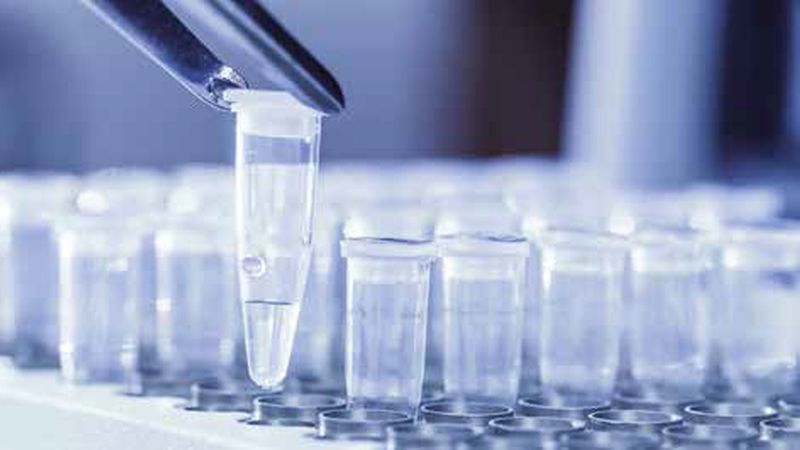 Fast, cost efficient and easy ELISA test for Bisphenol A
