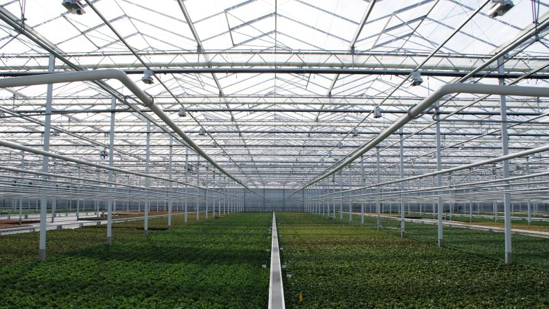 Smart aluminium greenhouse construction with high light transmission