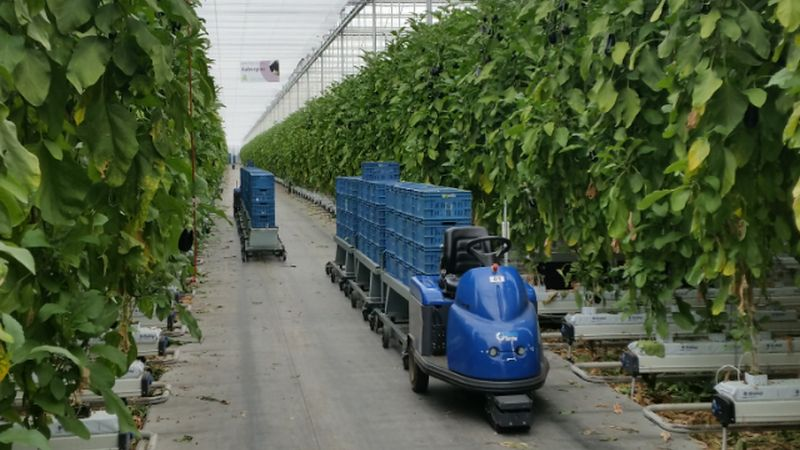 Innovative water treatment system for horticulture