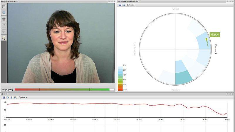FaceReader: real-time expression analysis